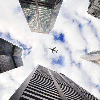 Global Mobility portfolio